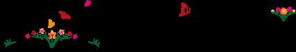 sn card logo horizontal black