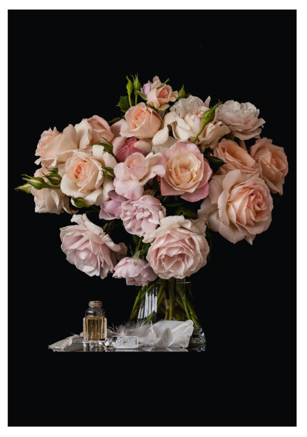 Scented Blush Roses